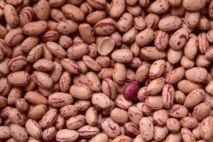 beans-1756589_960_720